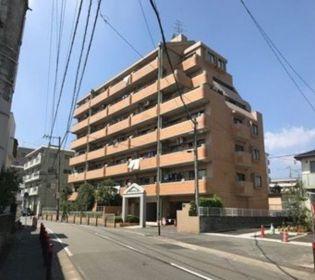 アンピールやよい坂 7階の賃貸【福岡県 / 福岡市南区】