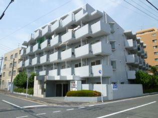 メゾン・ド・クレール 3階の賃貸【福岡県 / 福岡市南区】