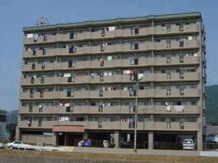 福岡県太宰府市水城1丁目の賃貸マンション