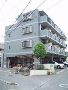 ヴィラ三光 2階の賃貸【福岡県 / 福岡市南区】
