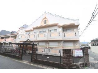 ステラハウス3 1階の賃貸【兵庫県 / 西宮市】