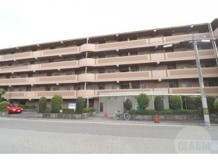 アプリーレ武庫川 3階の賃貸【兵庫県 / 西宮市】