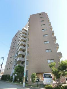 大阪府堺市堺区宿屋町西3丁の賃貸マンション