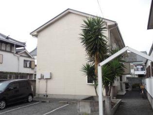 ロイヤルヘルツ 2階の賃貸【大阪府 / 堺市堺区】