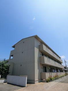 クリーク パレス 1階の賃貸【和歌山県 / 和歌山市】