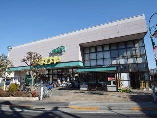 ランドフォレスト東中神 5階の賃貸【東京都 / 昭島市】