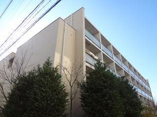 アクセスメゾン神戸[602号室]の外観