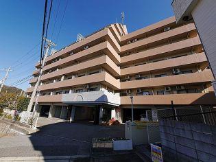 シーガルパレス神戸山の手[5F号室]の外観