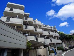 ジョイフル中山手 1階の賃貸【兵庫県 / 神戸市中央区】