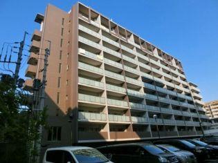 福岡県福岡市博多区豊1丁目の賃貸マンション