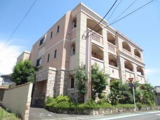 東京都葛飾区奥戸8丁目の賃貸マンション