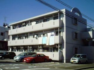 愛知県名古屋市中川区澄池町の賃貸マンション