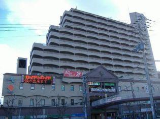 夙川グリーンタウン 6階の賃貸【兵庫県 / 西宮市】