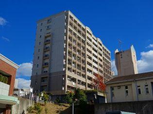 愛知県名古屋市千種区星ケ丘1丁目の賃貸マンション