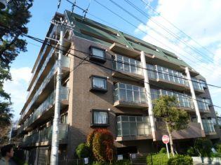 イトーピア夙川結善町 6階の賃貸【兵庫県 / 西宮市】