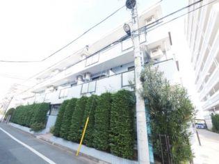第6泉マンション 1階の賃貸【東京都 / 練馬区】