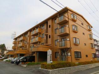 兵庫県西宮市中屋町の賃貸マンションの画像