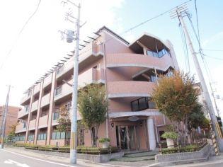 兵庫県西宮市里中町2丁目の賃貸マンションの画像