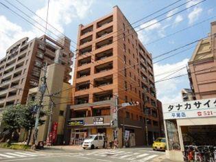 福岡県福岡市中央区平尾4丁目の賃貸マンション