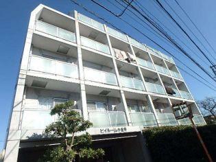 東京都小金井市緑町5丁目の賃貸マンションの外観