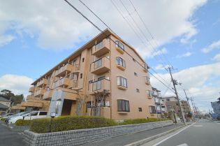 兵庫県西宮市中屋町の賃貸マンション