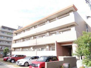 大阪府堺市堺区向陵中町6丁の賃貸マンション