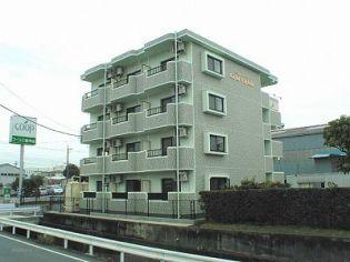 静岡県富士宮市三園平の賃貸マンションの外観