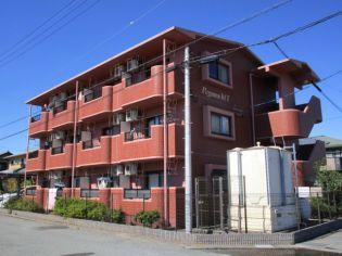 静岡県焼津市石津の賃貸マンションの外観