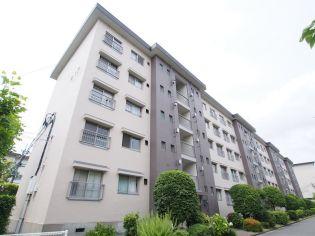 茨木郡山B住宅A-17棟の画像