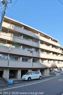 埼玉県富士見市西みずほ台3丁目の賃貸マンション