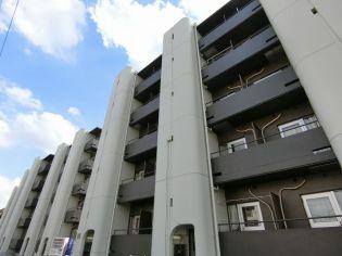 東京都八王子市寺町の賃貸マンション