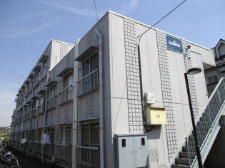 カーサデルソル 2階の賃貸【神奈川県 / 相模原市中央区】