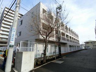 神奈川県大和市深見台1丁目の賃貸マンション