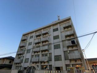 フォート子安 5階の賃貸【東京都 / 八王子市】