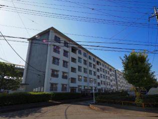 日野新坂下住宅1号棟[2階]
