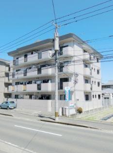 ハイネス那珂川[401号室]の外観