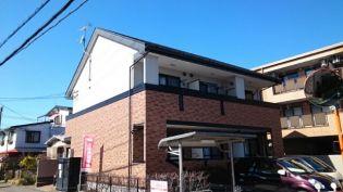 ドリ-ムコ-ト・M・Yの画像