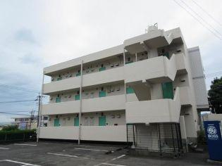 パラッツオ・モリⅡ 2階の賃貸【宮崎県 / 宮崎市】