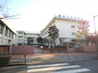 サンホーリハイツ 2階の賃貸【東京都 / 葛飾区】