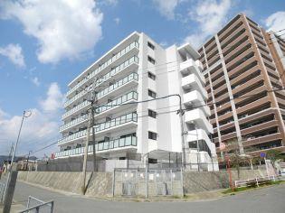 modern palazzo女神大橋[5階]の外観
