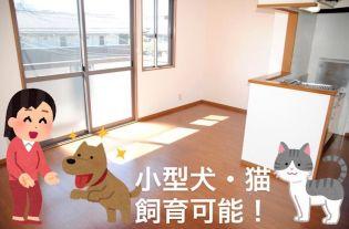 熊本県熊本市東区小峯1丁目の賃貸アパート