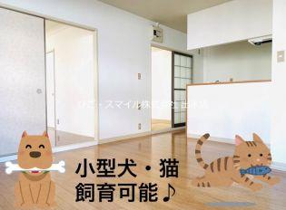 飛田ハイツII[102号室]