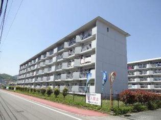 熊本県熊本市西区春日7丁目の賃貸マンション