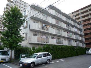 シャトル・リープ西新井[305号室]の画像