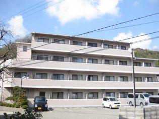 ライブオーク 2階の賃貸【兵庫県 / 神戸市垂水区】