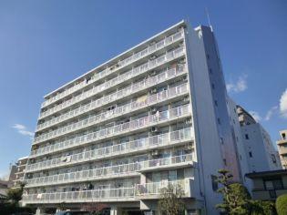 柏スカイハウス 7階の賃貸【千葉県 / 柏市】
