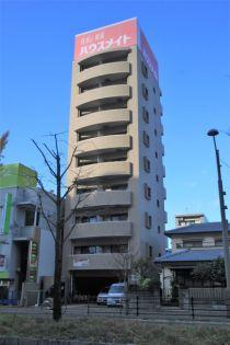 メゾン豊誠 6階の賃貸【愛媛県 / 松山市】