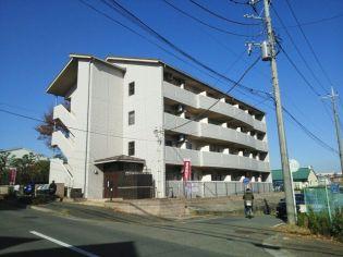 神奈川県横浜市緑区十日市場町の賃貸マンション
