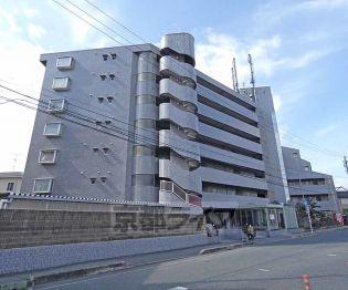 京都府京都市伏見区向島本丸町の賃貸マンション