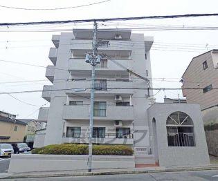 京都府京都市北区大宮西小野堀町の賃貸マンション